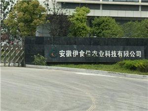 安徽伊食佳农业科技有限公司拖欠工资剥夺工伤待遇霸占商业保险