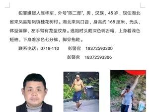 金沙国际娱乐官网公安重金悬赏犯罪嫌疑人