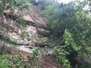 注意,盐亭县城有多处落石