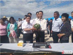 玉门市第二届花海蜜瓜节开幕