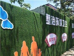 政府是要下定决心,治理环境卫生,还市民?#40644;?#34013;天,?#22303;?#36825;围墙,都绿化的正漂亮,让市民眼前一亮的感觉,处