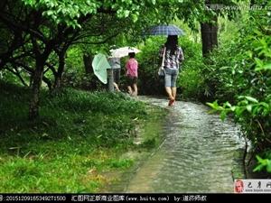 仲夏的雨/董文超