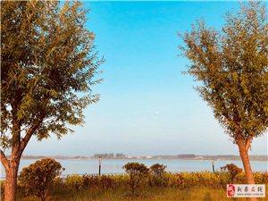 大美新蔡―――�|湖水�炱�(二)