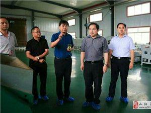 国务院扶贫办领导视察调研茶产业