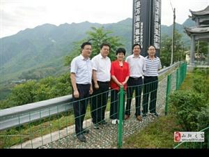 市人大领导一行视察调研产业园建设项目