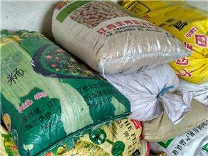东江源头自家种的稻谷便宜出售,自己吃不完,还剩2千斤左右,欢迎老板来收购!