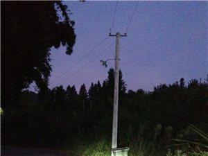 芋子窝6盏路灯好久没亮,电线也掉下去了,望有关部门检修!