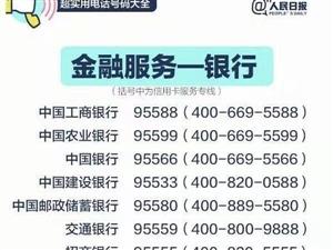 社会服务电话号码