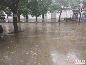 7月29日在刘秀路遗失车牌一个,号码为冀A932PJ,哪个好心人捡到请联系13315963100,谢