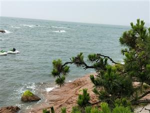 美��的大海