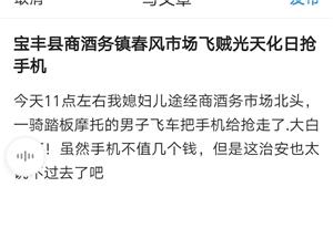 宝丰县商酒务镇春风市场飞贼光天化日抢手机
