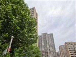 现房发售,即买即入住,无风险,学区房,超大楼间距,超高绿化率