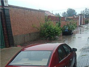 �r家院不是河,排水系�y杠杠的。