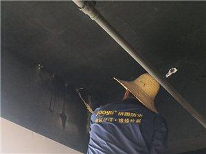 维修补漏,防水工程