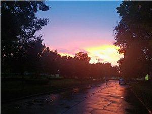 雨后美高梅平台
