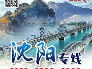 肇源旅游�W�衢T�路:沈�、��家界、青海、��夏、云南、�B�T…
