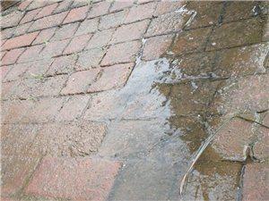 寻乌城东大道化粪池水往外流,望有关部门共同监管!