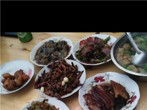 """网友""""人聚财旺""""吃过的菜!这是火车上的,48元/份你们愿意吃哪份?"""