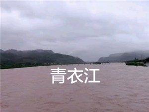 今天夹江旧大桥上看青衣江