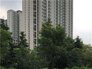 阜南县医院对面1000平整层出售