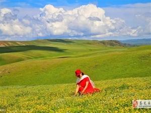 立秋作者/王建林淡夏已把农具收闻秋伊始正当候悯农骇颤波中浪艳阳金穗��