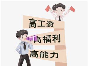汤阴古岳坊招聘