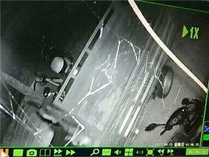 猖狂的小偷于8月10日凌晨1�c16分�男虐�羌t�G�艮D���偷了一�v�{色�w肯三�摩托�推往恒福商�沾�B的