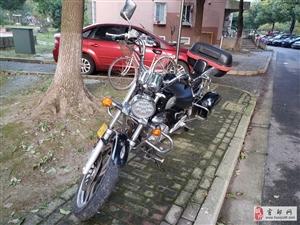 铃木美式太子摩托车出售
