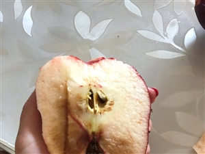 近10块一个的苹果就这样?