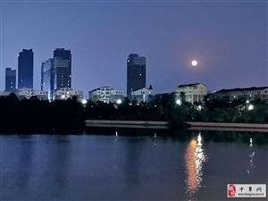 中元夜河行