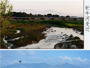在��牛河进去建平城区,西郊的北面,有一个村子,叫蒙西营子村,这个村子里,大多数住户,都是蒙古族人,