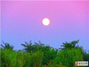 十五的月亮