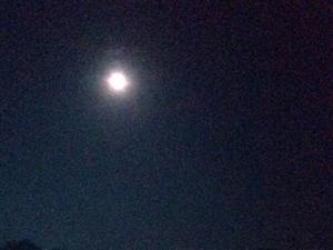 """每日正能量2019-8-17�D�D龙山人""""七月新秋时既望,待看明月出东山。""""这是方伟老师今早五点"""