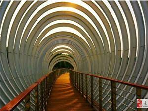 驻马店练江河有座网红桥,你走过吗?