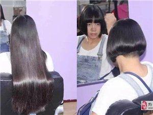 长期收购长头发