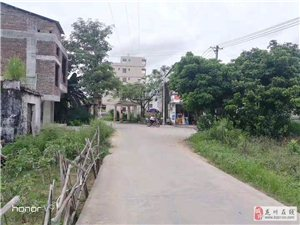 老隆镇江边村有400平方左右地皮低价急售。有意者联系13726260577