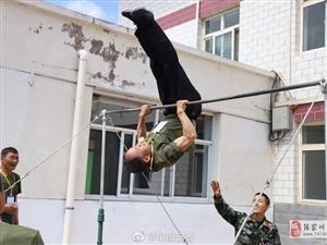 军报记者:90年代入伍老兵二十多年后重返老连队张家川县中队