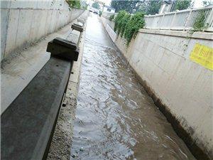 �]有下雨,�e水�@么深,有�P部�T。�@么久都�]有�理。�e水越�碓缴睢4蛑�改善人居�h境的口�,不干��事呀。