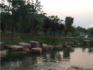 环山溪水流!
