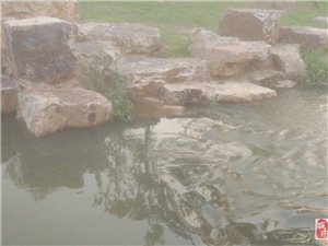 水与石的融合