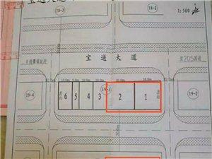 登云镇深圳(龙川)产业转移工业园内两块地皮出售