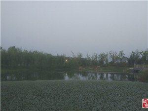 桥――菱角――观景台,