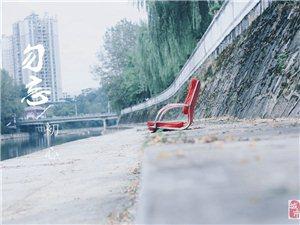 生在城市长在街头――湄潭篇