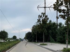 这个拦路虎也太夸张了吧?三四米宽的路。。。