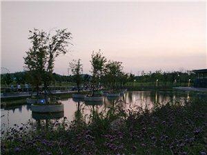 夜幕来临之前的莘庄湖