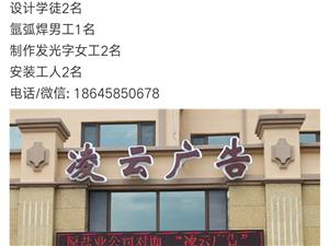 凌云广告招工