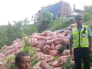 一车大蒜翻到滑县了。附近村民骑着电三轮。。。。