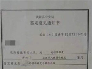 武陟县黑恶势力横行没人管?!政法部门放纵!