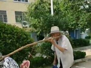《七�^●和杭州老余�^》