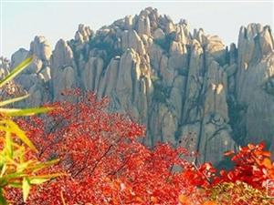 一个方圆50公里的盆景——嵖岈山